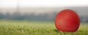 Dodgeball Saturday January17th